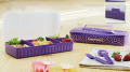 Tupperware Purple Mania