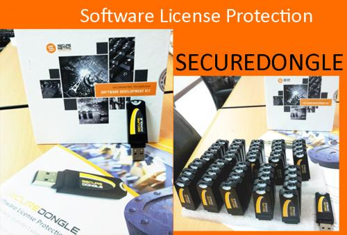 Software License protection